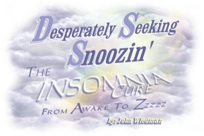 Desperately Seeking Snoozin' - INSOMNIA CURE - John Wiedman